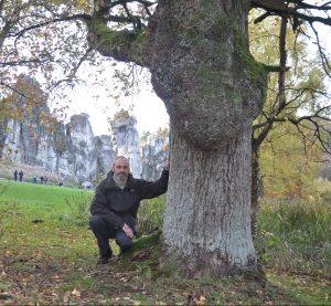 Meditationsreisen im Naturschutzgebiet Externsteine
